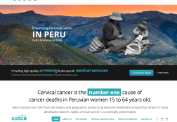 Cervi Cusco Cancer Prevention Program